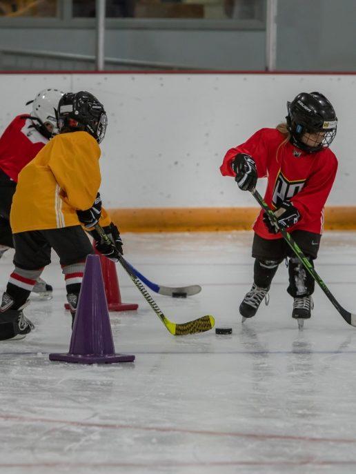 Athletes playing hockey at Sports Day Camps