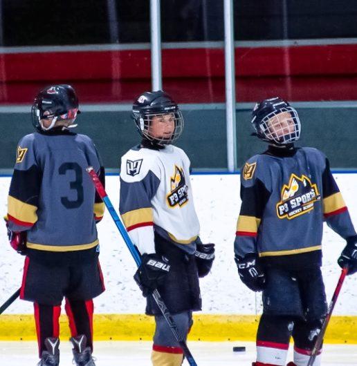 Spring Hockey Program