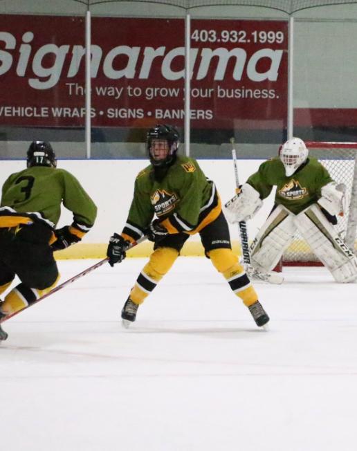 P3 Hockey Academy High Tech Facility