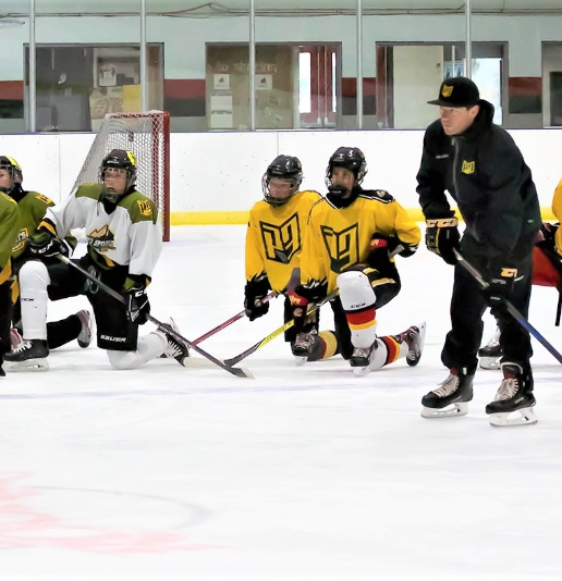 P3 Sports Hockey Approach