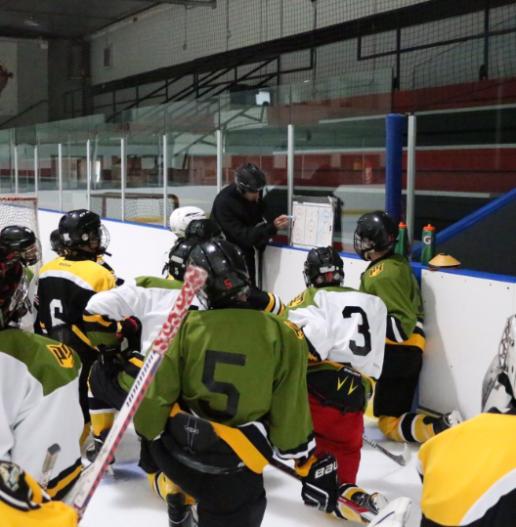 P3 Sports Hockey Comprehensive Training Program