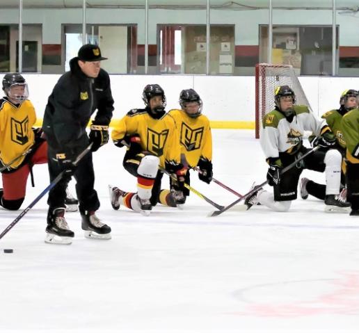 P3 custom hockey skill pack