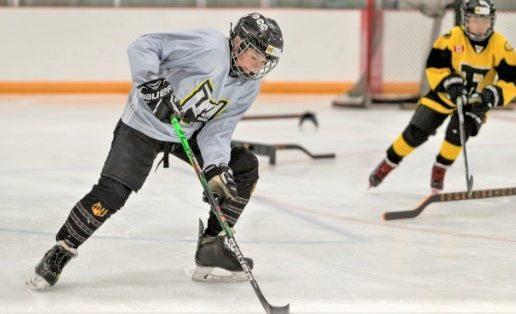 P3 Hockey Academy
